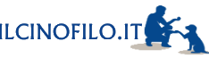 cropped-ilcinofilo.it-logo-blu-10.png