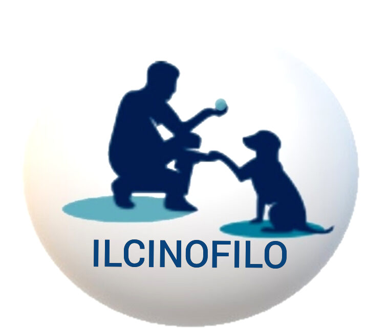 ILCINOFILO.IT