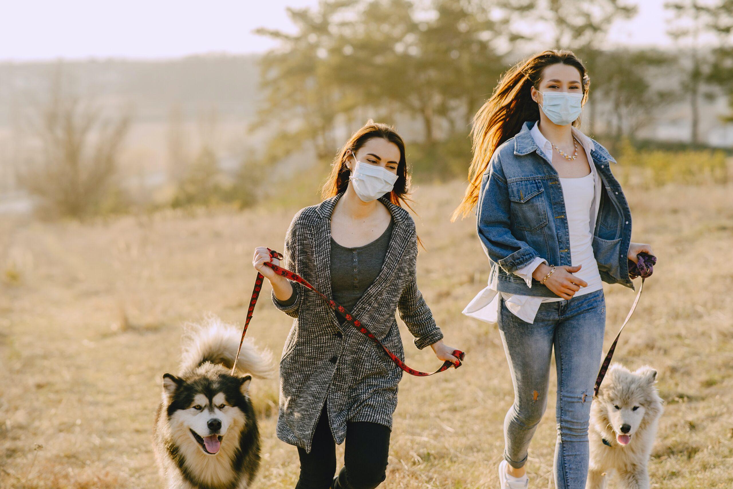 cani e padroni mascherina